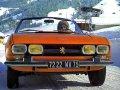 504 Cabrio (504)