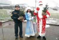 ГАИ Минска проводит акцию «Безопасный Новый год»